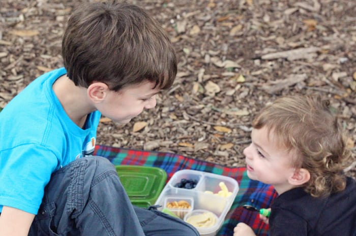 brothers picnic