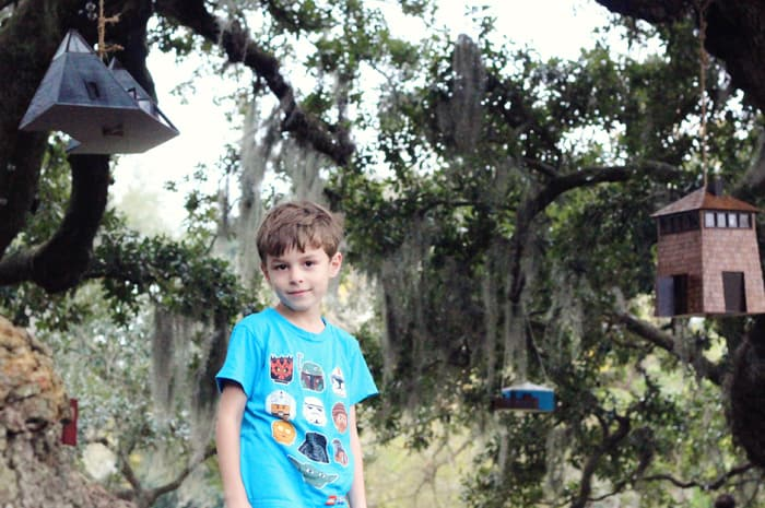 alex on the tree