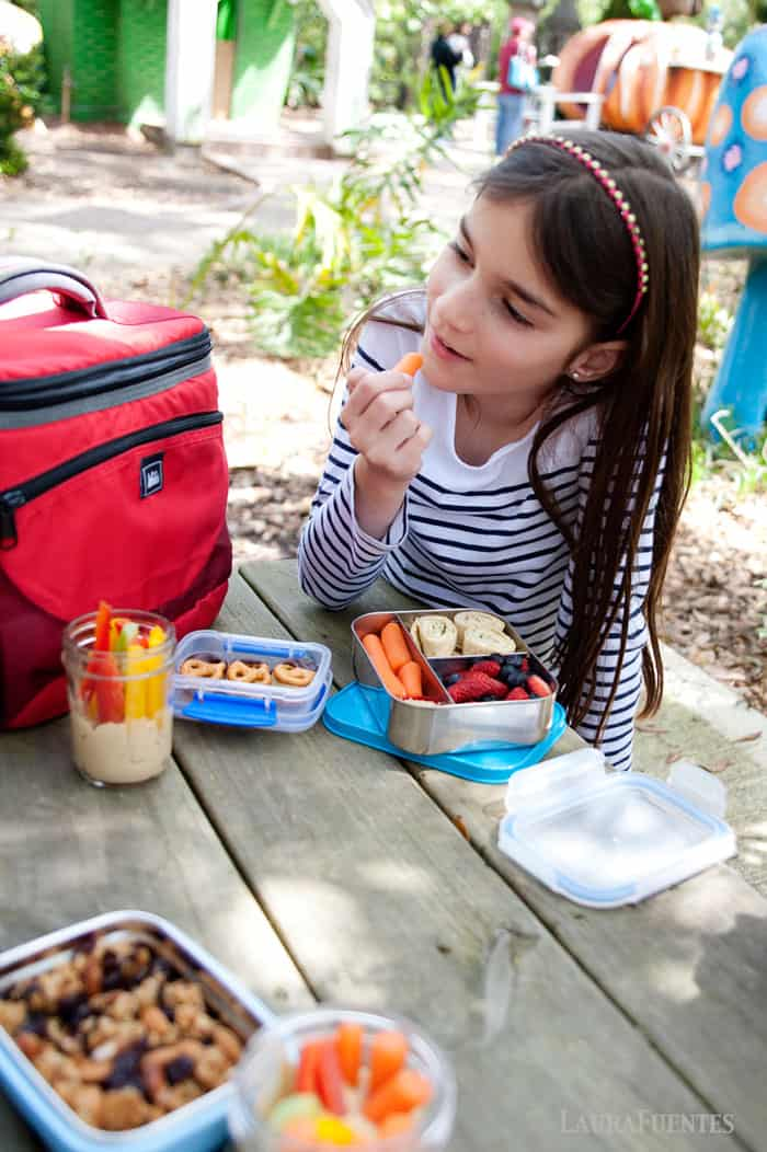 healthy snacks out in the park: fresh fruit, avocado pinwheels, hummus cups, and chocolate covered pretzels