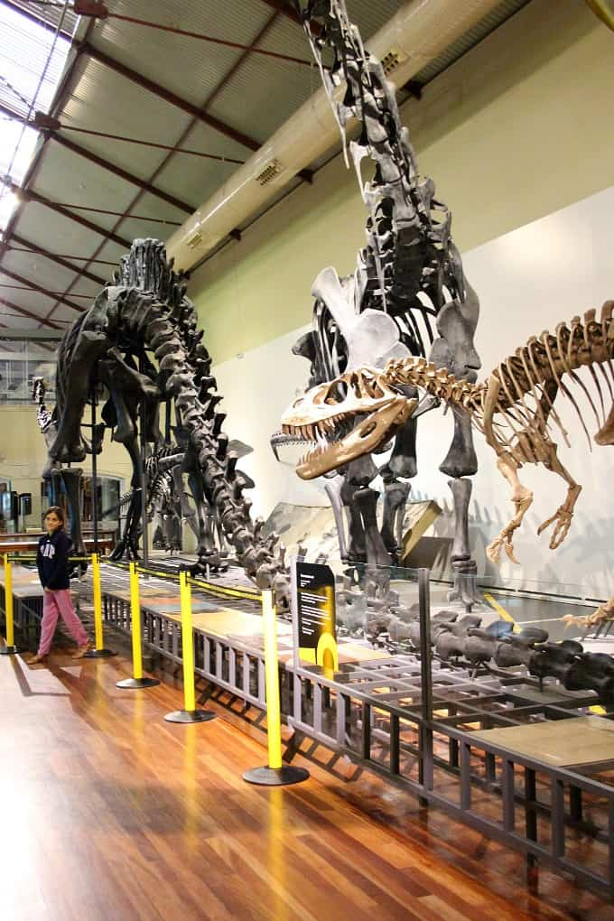 dinosaur exhibit natural science museum madrid spain