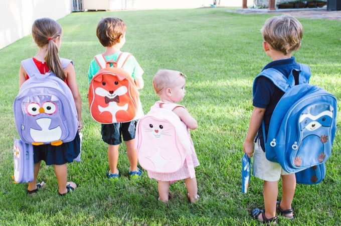 Back to School with animal backpacks and lunchboxes!