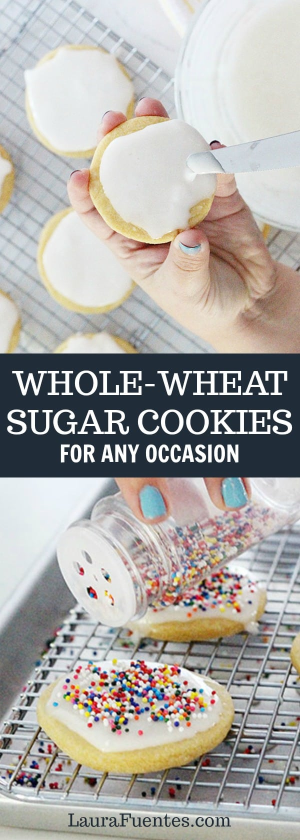 whole wheat sugar cookie recipe that is easy to make and can be cut out and frosted for any occasion