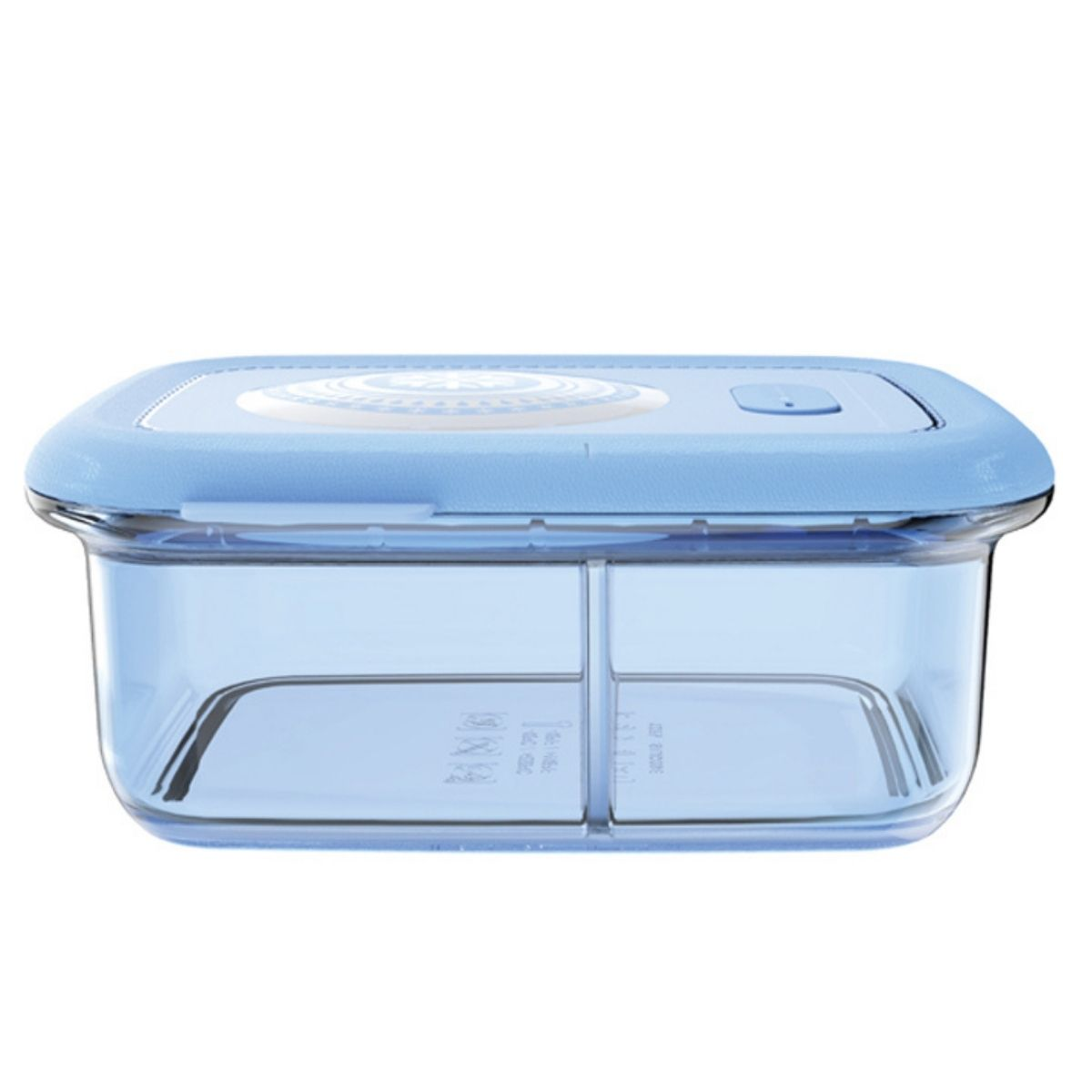 silicone divided lunch container for adults